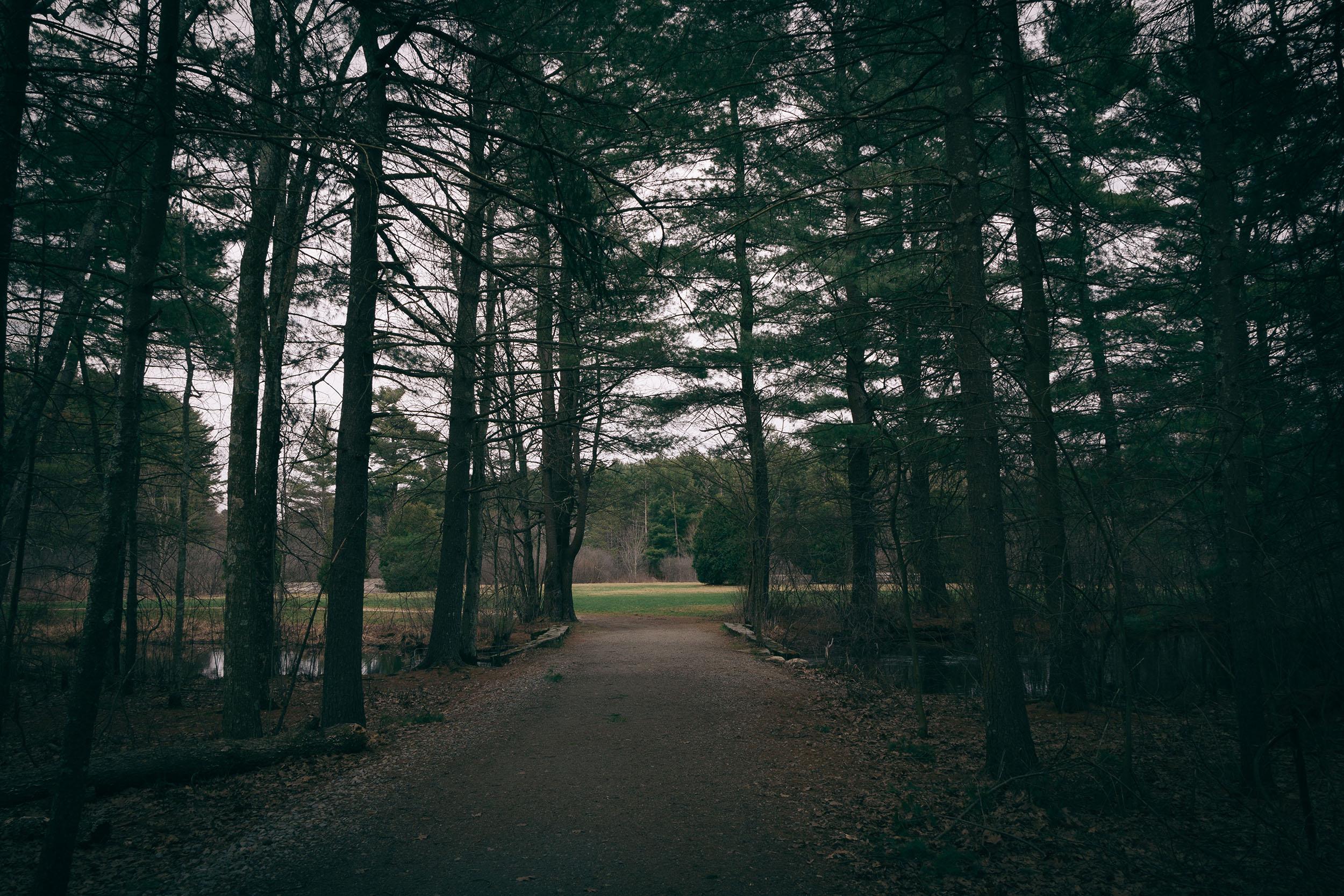 Matt Grandbois Photography — elegant_walkway