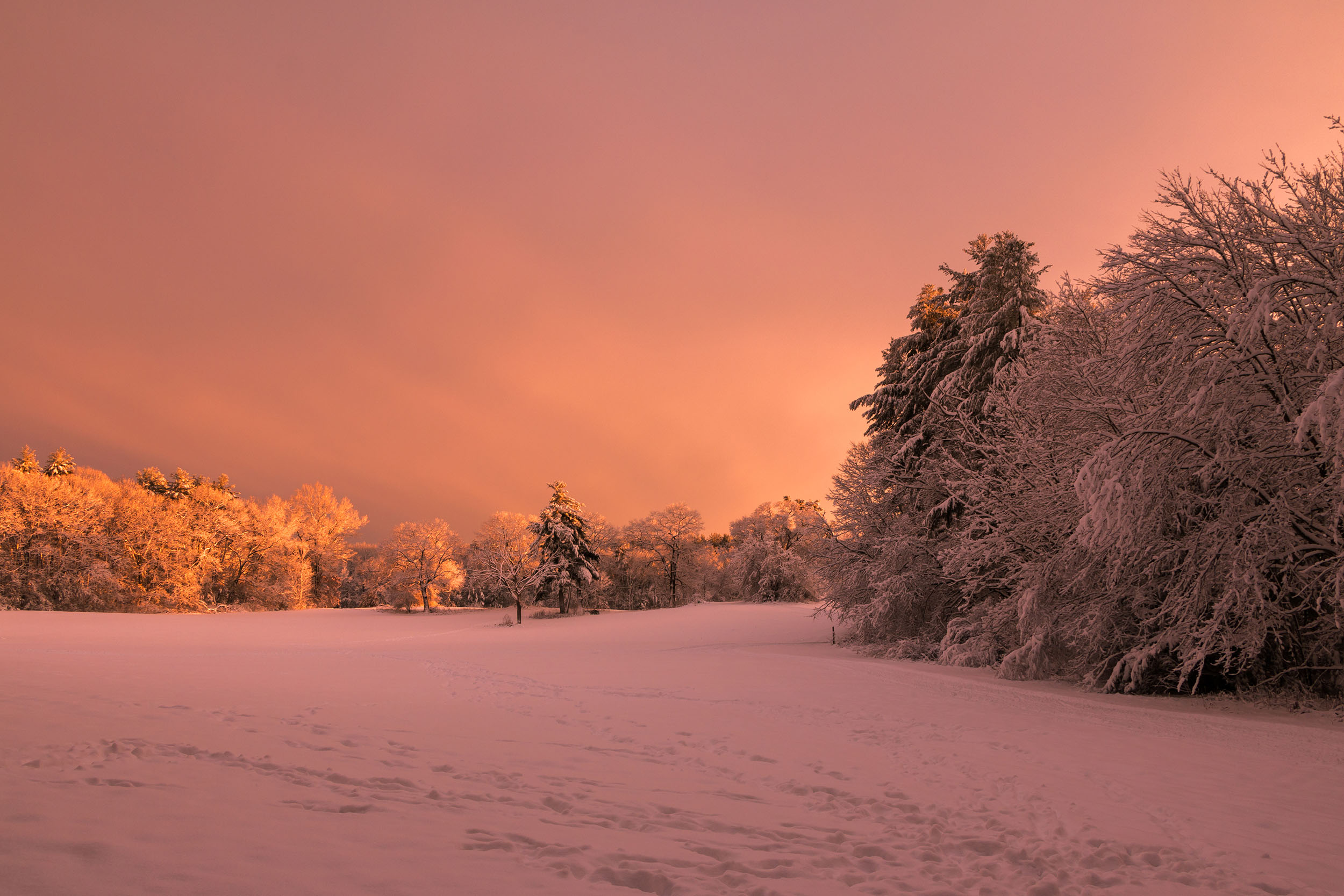 Matt Grandbois Photography — golden_sunset_snow